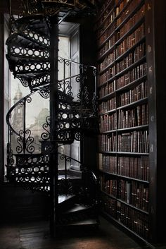 I just want a library with a spiral staircase. Now really is that too much t Spiral Staircase Library spiral staircase Beautiful Library, Dream Library, The Library, Music Library, Library Ideas, Photo Library, Victorian Library, Victorian Gothic, Modern Gothic