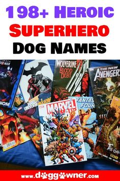 If you're a superhero fan and you've just adopted a new furry friend this is your chance to give it a short, creative, funny, and heroic name! Below we have a list of 200 superhero dog names for your new dog! #superherodognames #superhero #dognames