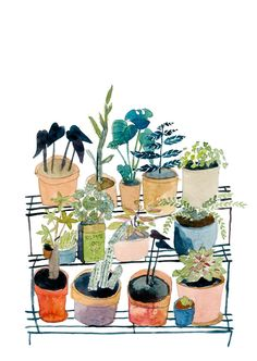 Elizabeth Barnett - Plant Stand, limited edition giclee print