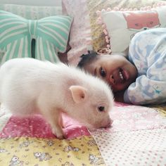 A cute little girl and her cute pet piggy :). The love of animal-friendship is beautiful <3