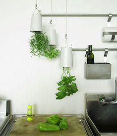 Upside-down herb planters http://www.myhomerocks.com/2012/03/indoor-herb-gardens-and-salad-walls/