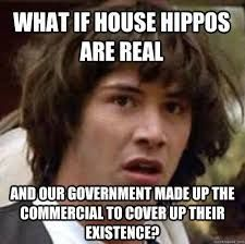 Image result for house hippo