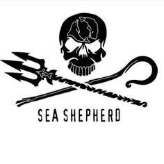 Les justiciers des mers: Sea Shepherd