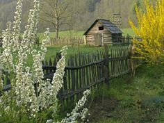 Such a lovely fence... annachandelle:    Great Smoky Mountains