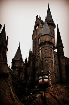 Which of the Great Wizarding Schools do YOU belong to?