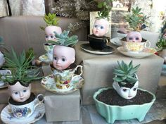 succulents in doll head planters
