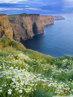 THE CLIFFS OF MOHER, CLARE IRELAND