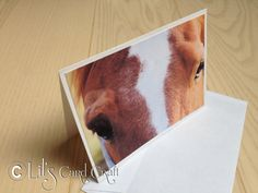 Handmade Card with my Horse  Blank Card by LilsCardCraft on Etsy, $2.50
