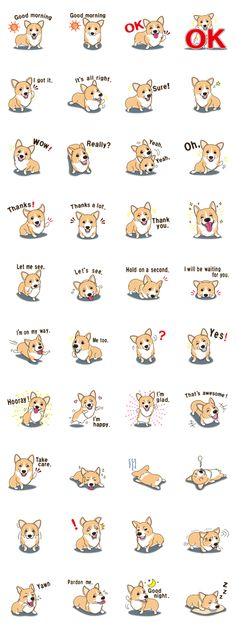 This is a sticker of lively Welsh Corgi than it looks. Please use in everyday conversation of friends and family.