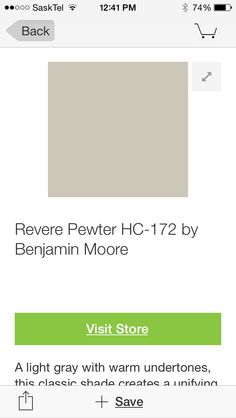 Pewter paint