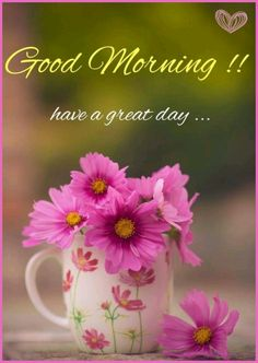3840 best greet the day images on pinterest in 2018 buen dia 3840 best greet the day images on pinterest in 2018 buen dia bonjour and good morning m4hsunfo