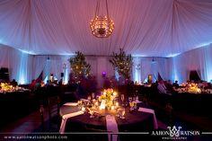 Stephanie & Rich's Veritas Winery Reception in Afton, VA! » Aaron Watson Photography