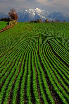 Hokkaido, Giappone