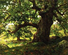 The Oak Charles Harold Davis 1903 New Britain Museum of American Art (United States) Painting - oil on canvas Height: 73.66 cm (29 in.), Width: 91.44 cm (36 in.)