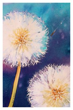 Make A Wish by ~rsharts Artist's Statement. Dandelion seed heads have always held a fascination for me, this is the latest in a series of water colours exploring their ethereal nature.
