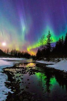 Aurora moonset