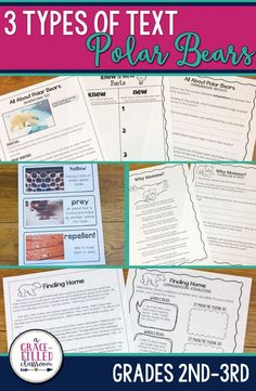 Second and third grade teachers this Polar Bear reading has 3 types of text! One product with Informational Text, a Fictional Story, and a Non-Fiction Poem. The story and the poem are original works that I've written especially for this product. I've provided two ways to interact with the informational text: Magazine Style with two columns per page and Full page which can be used for close-reading and annotating.|Polar Bears|English Language Arts|Holidays|Seasonal| Winter|