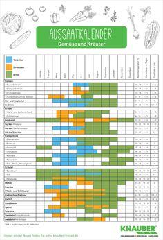 Kalender für die Aussaat und Ernte von Gemüse und Kräutern - Knauber WeltKnauber Welt