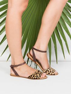 Not a fan of animal print, but these are cute!