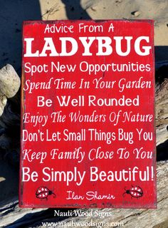 Ladybugs - Ladybug Decor - Ladybug Gift - Advice From A Ladybug Sign - Wood Garden Sign - Garden Decor - Yard Gardener - Rustic Quote Wooden Signs - Nature Outdoors Vintage Shabby Plaque Home Flowers Gift $ #ladybugs #advicefroma #ladybugsign #housesigns