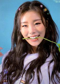 WheeIn | Mamamoo | 4SEASON F/W Photocard (HQ)