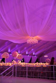BEYOND used purple lighting and this fantastic chandelier to create a breathtaking reception! Held in a custom built tent in the Fort Worth Zoo BEYOND loved working with Emily Clarke Events for this glam reception! www.beyondld.com