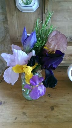 Some of the fantastic iris's from our garden in Le Marche, Italy.
