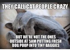Scottish Fold Cats And Kittens For Sale below Cutest Animals Ever List and Mother Cats And Their Kittens Readworks behind Cute Baby Animals Playing Videos Funny Animal Memes, Funny Animal Pictures, Cat Memes, Funny Cats, Funny Animals, Cats Humor, Animal Humor, Funny Horses, Crazy Cat Lady