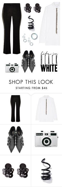 """""""Take a photo."""" by catpaw29 ❤ liked on Polyvore featuring Isabel Marant, ADAM, RED Valentino, Holga and Proenza Schouler"""