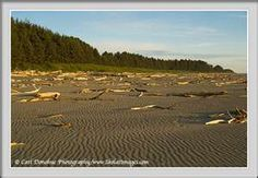 Cannon Beach, Yakutat, Alaska great combing