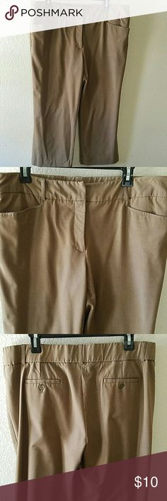 """Tummy Control Capri  Beautiful and comfortable tummy control capri. Can be used for outing, shopping or work. No stains or damages. 32 1/2"""" L. 10 1/2"""" inseam. Briggs New York Pants Capris"""