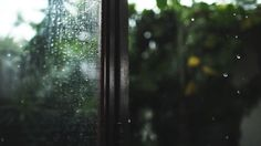 ________We love rain