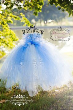My daughter will have lots of Disney princess dresses!!