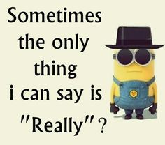Say really? 。◕‿◕。 See my Despicable Me  Minions pins https://www.pinterest.com/search/my_pins/?q=minions