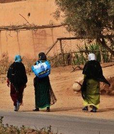 モロッコの原住民おばさんたち  モロッコ紀行4日目アーモンドの花鑑賞の地でのおばさんたちの小行進  どうてことない風景だけど日本のおばさんとは全然違う(笑)味わいあるね  #おばさん #原住民 #モロッコ #アーモンドの花 #ツアー #海外旅行tags[海外]