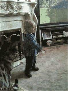 The parents of this lil' boy should've told him 2 play some where else.... Parents should no how cats r....