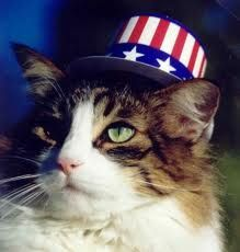 Keeping your pet safe on the 4th of July
