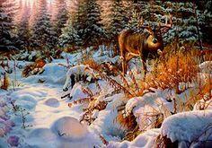 Deer Pics, Deer Pictures, Hunting Art, Deer Hunting, Whitetail Hunting, Deer Drawing, Deer Art, Unusual Animals, Wildlife Art