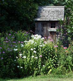 Garden shed into henhouse