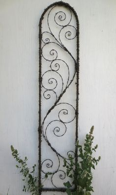 https://flic.kr/p/cR29Rd | 5 foot barbed wire trellis | Made from reclaimed vintage barbed wire salvaged from Montana farms and ranches.