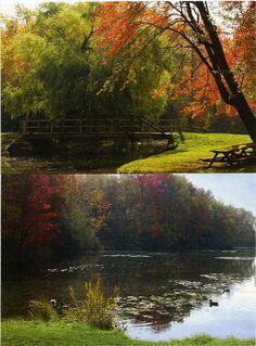 Little York Lake Park Homer NY    Google Image Result for http://www.bobbundy.com/Auctions31/131NyLittleYork.jpg