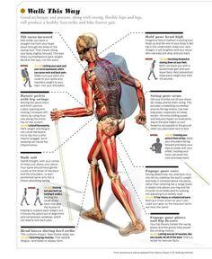 Backbacking back pain map