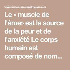 Le « muscle de l'âme» est la source de la peur et de l'anxiété Le corps humain est composé de nombreux os dont les mouvements sont essentiellement produits par des ligaments, des muscles, des articulations, et d'innombrables autres éléments mobiles qui composent votre corps, mais le plus important
