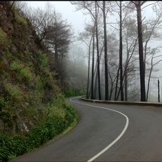 Madeira, Portugal-love this pic!