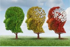 Alzheimers, Diabetes, Brain Boosting Foods, Forms Of Dementia, Brain Supplements, Holistic Treatment, Medical Icon, Mental Health Issues, Photo Memories