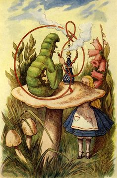 """ ""Who are you?"" "" Lewis Carroll, Alice's Adventures in Wonderland, illus. John Tenniel (London: Macmillan, 1928 [1865])."
