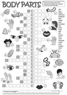 Body parts - crossword