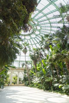 Royal Greenhouses of Laeken in Brussels Plant Aesthetic, Travel Aesthetic, Aesthetic Green, Conservatory Garden, Ivy Plants, Glass House, Dream Garden, Art And Architecture, Water Features
