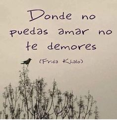 "Sad words Frida Kahlo ""where you cannot love do not delay"" Diego Rivera, Best Quotes, Love Quotes, Inspirational Quotes, Favorite Quotes, Motivational Phrases, Random Quotes, Funny Quotes, Frida Quotes"