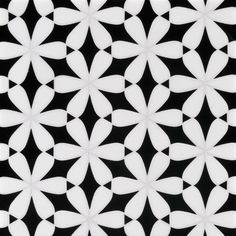 Tile. ANN SACKS Mosaics in bloom black and white.  This tile is amazing.